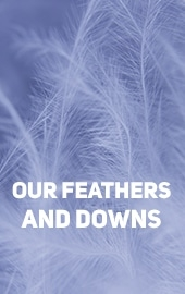 Our feathers and downs